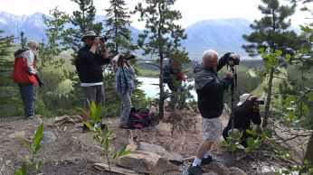 Group taking waterfall photos at Grassi Lakes