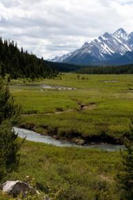 Rick Engadine Lodge Meadow